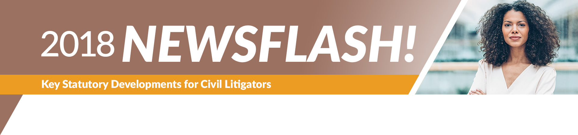 2018 NewsFlash Civil Litigators