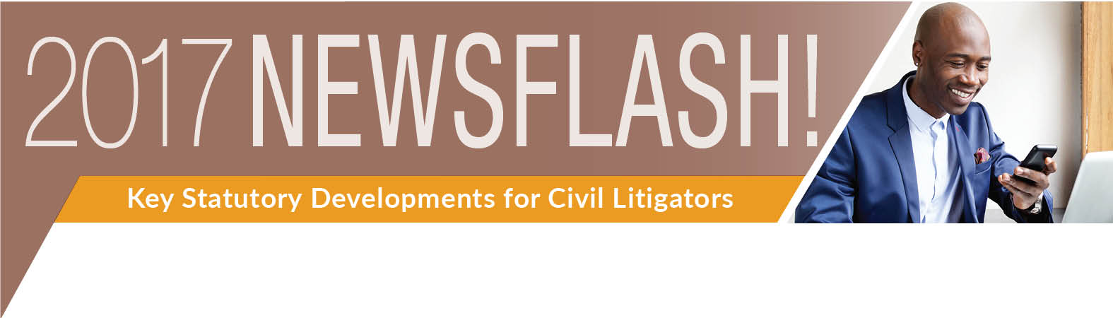 2017 NewsFlash Civil Litigators