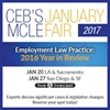 Employment Law Practice: 2016 Year in Review