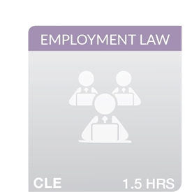Co-Employment And Joint Employer Liability