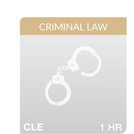 Criminal Justice: Mental Health And The Courts