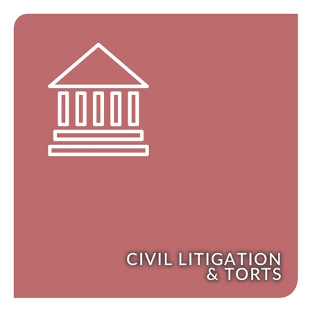 Show products in category Civil Litigation & Torts