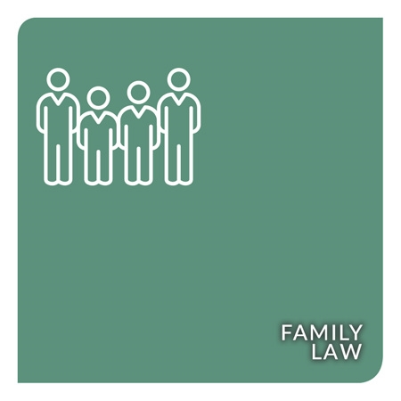 Show products in category Family Law