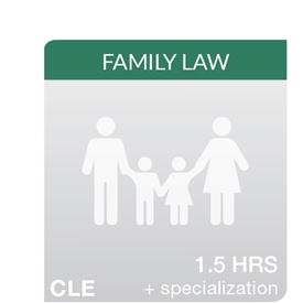 Picture of Supporting Family Law Clients in Custody Mediation and Recommending Counseling