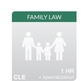 Anticipating Appeals in Family Law Cases