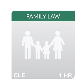 7th Annual Cultural Competency in Family Law Practice: War and Marriage: Impact of War on the Military's Families