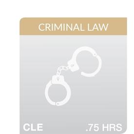 2019 Death Penalty Case Law Update